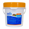 POOLIFE Cleaning Tablets Pool Chlorine 9.625 lb Item #42119