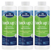 BioGuard Back Up 2 Pool Algaecide 32 oz - 3 Pack - Item 23050-3