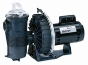 Pentair Challenger Pool Pump 1 HP 115/230v - Item 346204