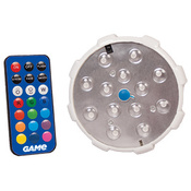 Color Changing Pool Wall Light with Remote Control - Item 4307