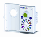 IntelliBrite Color 5G LED Pool Light Controller - Item 600054