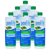 POOLIFE AlgaeBan II Quart Pool Algaecide 32 oz - 6 Pack - Item 62069-6