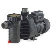 Speck A91-II Variable Speed Pump 1.1 HP - No Cord/Plug - Item AG215-V100T-000