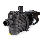 Speck BADU EcoM3 V 1.65 HP Variable Speed Pump - Item IG135-V165T-000