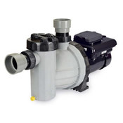 Speck BADU EcoMV 72-V 2.7 HP Variable Speed Pump - Item IG245-V270T-000