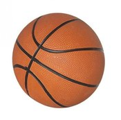 7 inch Mini Basketball - Item NG2213