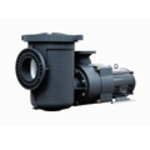 Commercial Pool Pumps