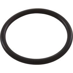 O-Ring, Waterco HydroStorm/Plus, Union - Item 35-252-1181