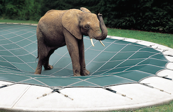 Shop Loop-Loc Safety Pool Covers